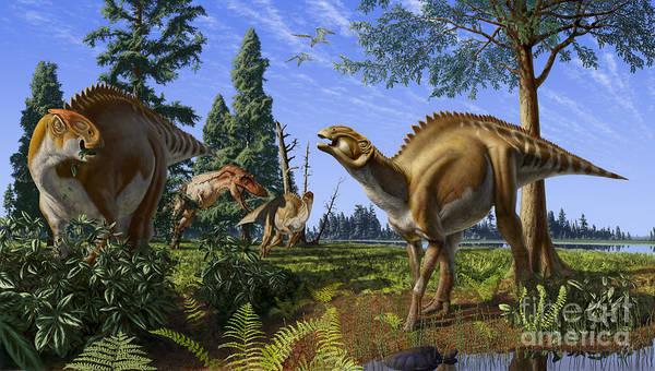 Dinosaur Art Print featuring the digital art Brachylophosaurus canadensis by Julius Csotonyi