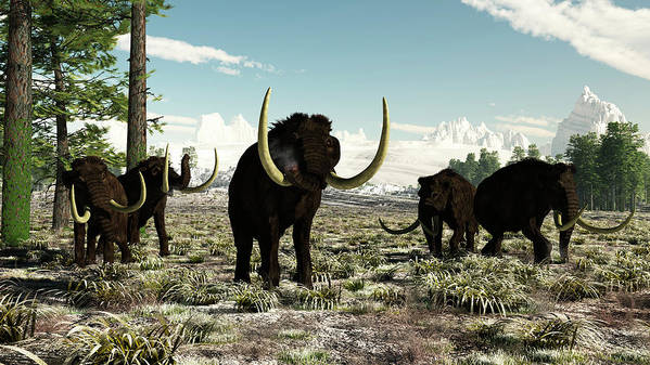 Prehistoric Era Art Print featuring the digital art Woolly Mammoths In Europe Or Almost by Arthur Dorety/stocktrek Images