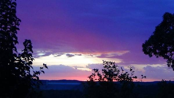 Purple Sunset Art Print featuring the photograph Purple Passion by Toni Berry