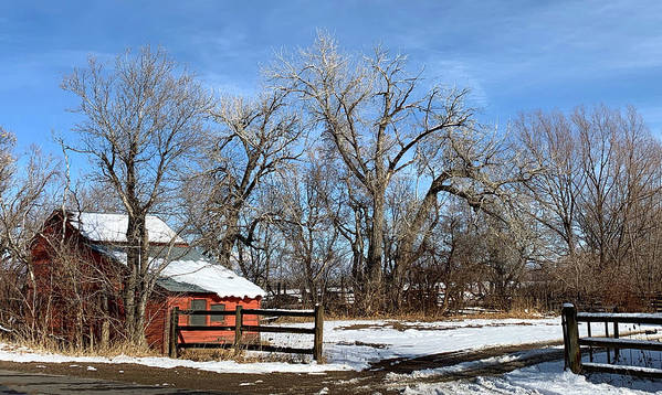 Americana Art Print featuring the photograph Horse Loafing Shed After Snow by Marilyn Hunt