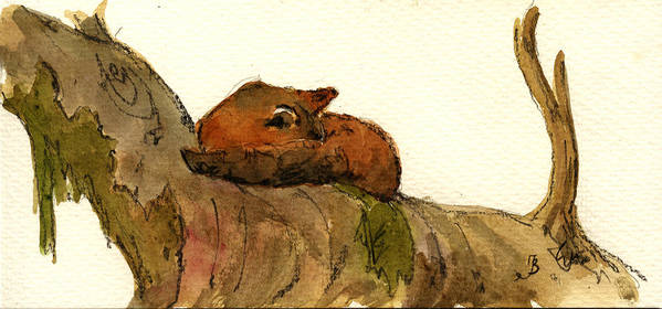 Red Art Print featuring the painting Sleeping Red Fox by Juan Bosco