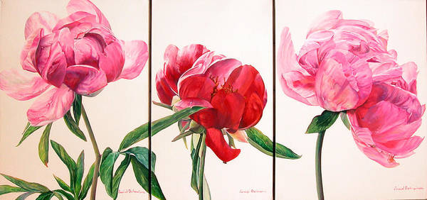 Floral Painting Art Print featuring the painting Pivoines by Muriel Dolemieux