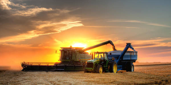 Landscape Art Print featuring the photograph The Harvest by Thomas Zimmerman
