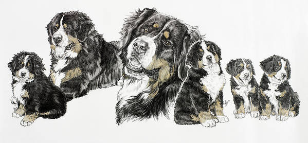 Bernese Mountain Dogs Art Print featuring the painting Bernese Mountain Dog by Barbara Keith