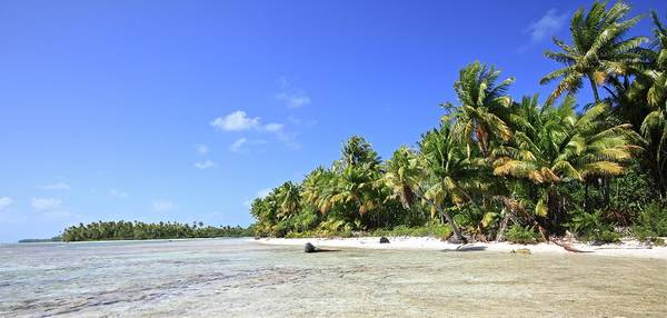 Tranquility Art Print featuring the photograph Rangiroa - Isola Dei Coralli - Reef Isl by Loving And Living In This Planet