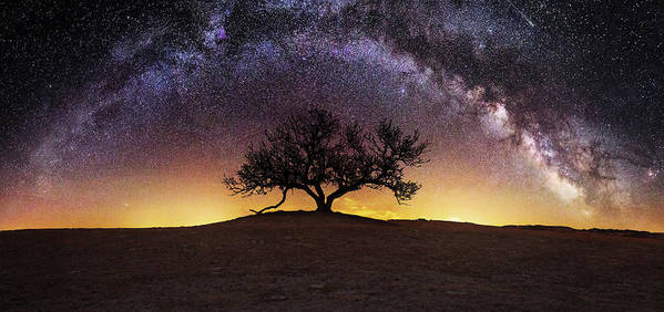 Milky Way Art Print featuring the photograph Tree of Wisdom by Aaron J Groen