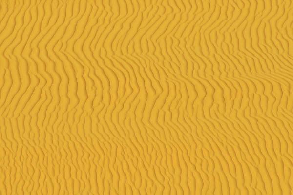 Sand Dune Art Print featuring the photograph Sand Dune Patterns by Raimund Linke