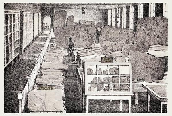 1858 Appleton Cabinet Ichnology Hitchcock by Paul D Stewart