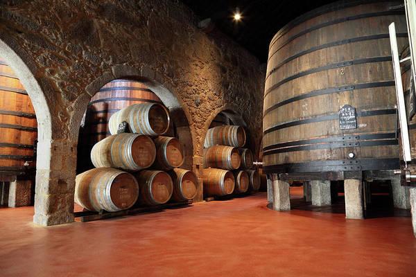 Fermenting Art Print featuring the photograph Porto Wine Cellar by Vuk8691