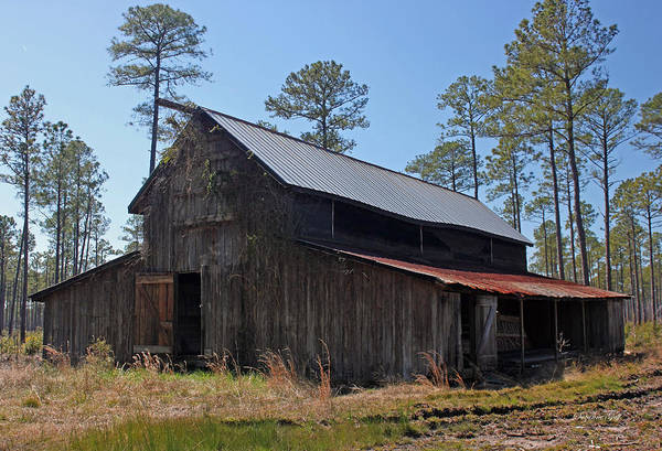 Barn Art Print featuring the photograph Abandoned Carolina Barn by Suzanne Gaff