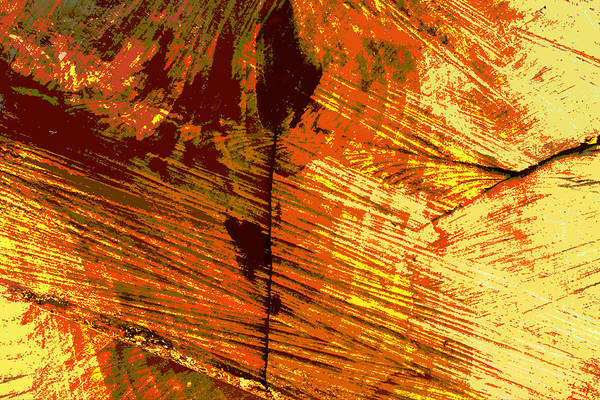 Abstract Art Print featuring the photograph Abstract Wood Grain by John Lautermilch