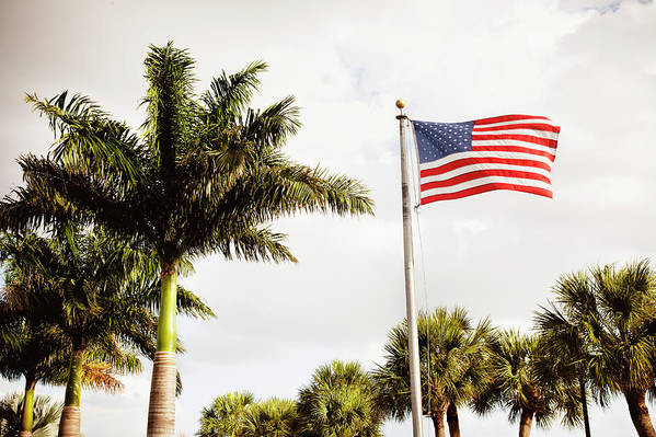 Tranquility Art Print featuring the photograph American Flag Flying Amongst Palm Trees by Ron Levine