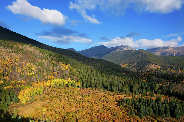Scenics Art Print featuring the photograph Autumn Color In Colorado Rockies by A L Christensen