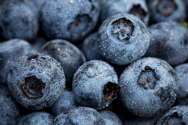 Surrey Art Print featuring the photograph Blueberries Fruits by Kevin Van Der Leek Photography