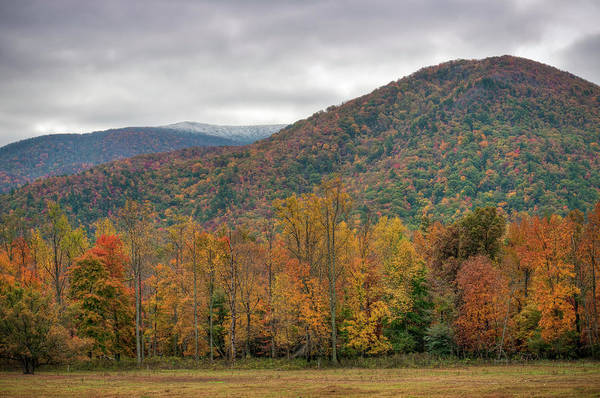 Scenics Art Print featuring the photograph Cades Cove, Great Smoky Mountains by Fotomonkee
