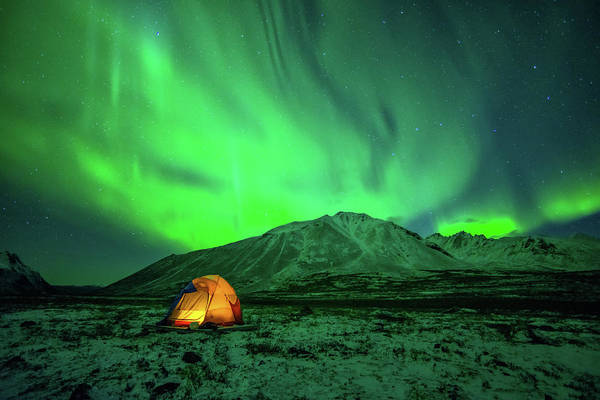 Camping Art Print featuring the photograph Camping Under Northern Lights by Piriya Photography