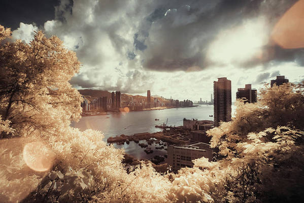 Treetop Art Print featuring the photograph Cityscape In Dream by D3sign