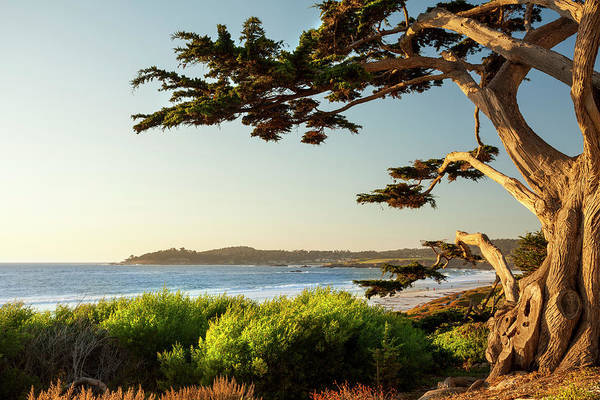 Scenics Art Print featuring the photograph Colorful Beachfront In Carmel-by-the-sea by Pgiam