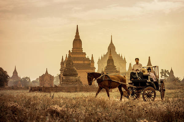 Horse Art Print featuring the photograph Horse And Carriage Turning By Temples by Merten Snijders