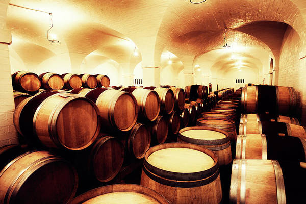 Alcohol Art Print featuring the photograph Large Winery Cellar Filled With Oak by Rapideye