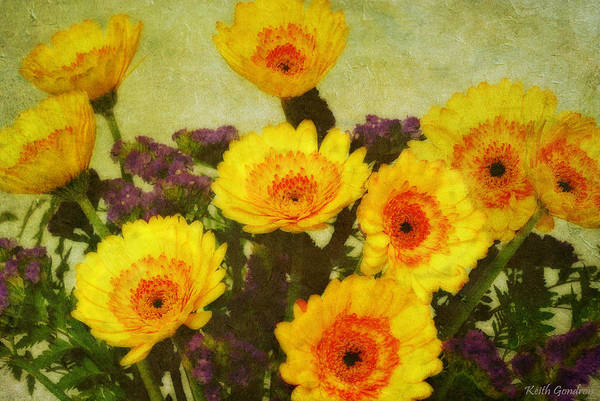 Bouquet Art Print featuring the photograph Lots of Daisies by Keith Gondron