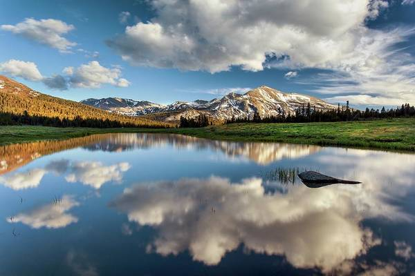 Scenics Art Print featuring the photograph Mammoth Peak Reflection by Tom Grubbe