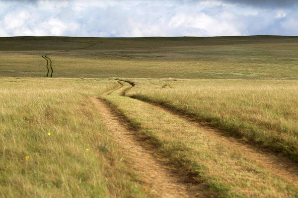 Scenics Art Print featuring the photograph Meandering Path Through The Hills Of by Morgan Trimble
