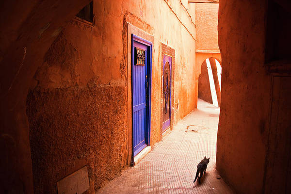Arch Art Print featuring the photograph Medina Of Marrakesh by Moreiso