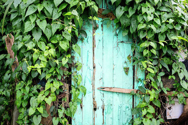 Outdoors Art Print featuring the photograph Old Wooden Door by Real444