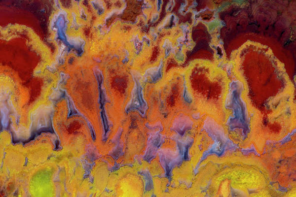 Mineral Art Print featuring the photograph Primo Jasper In Hot Colors by Darrell Gulin
