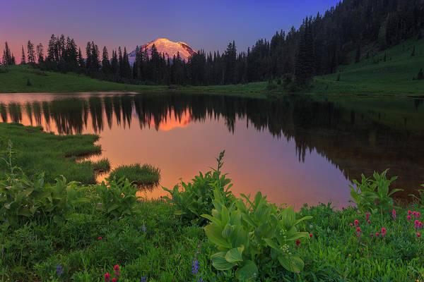 Mount Rainier Art Print featuring the photograph Rainier Reflections by Manju Shekhar