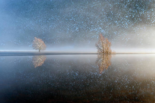 Scenics Art Print featuring the photograph Reflections In A Lake In Winter, French by Jean-pierre Pieuchot