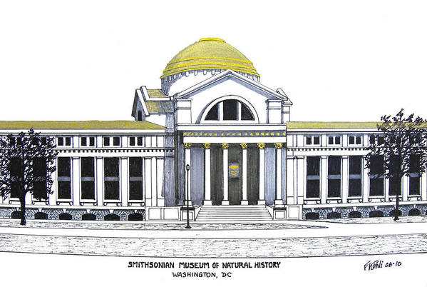 Ink Drawings Art Print featuring the drawing Smithsonian Museum of Natural History by Frederic Kohli