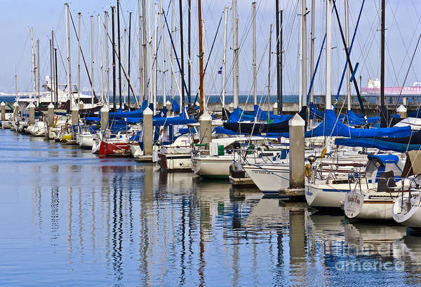 Boats Art Print featuring the photograph Sunny Marina by Kate Brown