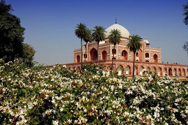 Tranquility Art Print featuring the photograph Tomb Of Humayun by Smit Sandhir