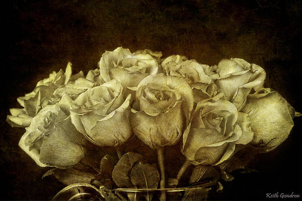 Bouquet Art Print featuring the photograph Vintage Roses by Keith Gondron