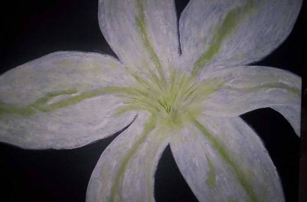 Black Art Print featuring the painting White Lilly by Becca Haney