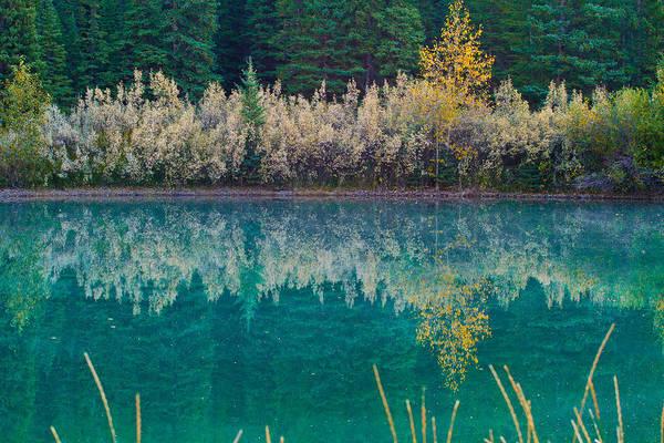 Nature Art Print featuring the photograph Fall Reflections by Manju Shekhar