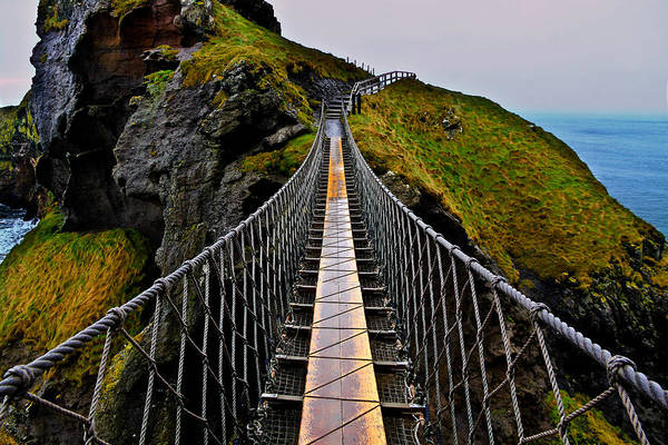 Rope Bridge Art Print featuring the photograph Carrick-a-Rede Rope Bridge by Justin Albrecht
