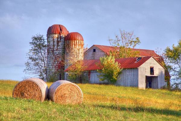 Barn Art Print featuring the photograph Two by Mitch Cat