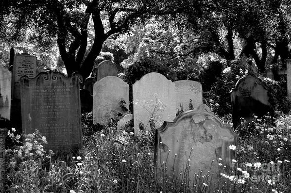 Cemetery Art Print featuring the photograph Brompton Cemetery London England 2009 by Wayne Higgs