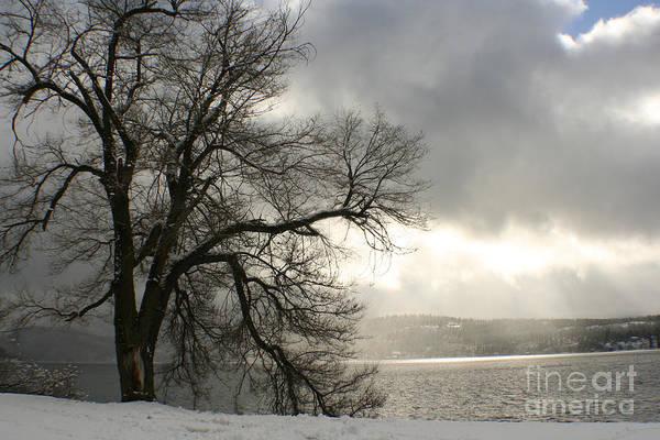 Lake Art Print featuring the photograph Luminescence by Idaho Scenic Images Linda Lantzy