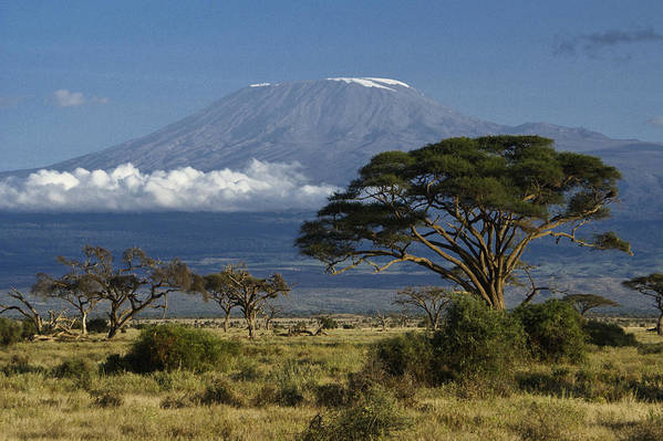 Africa Art Print featuring the photograph Mount Kilimanjaro by Michele Burgess