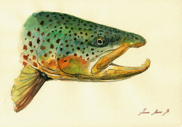 Trout Art Wall Art Print featuring the painting Trout watercolor painting by Juan Bosco