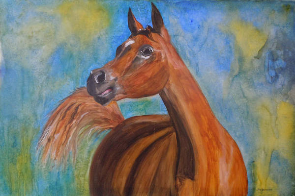 Horse Art Print featuring the painting Arabian Beauty by Jean Blackmer