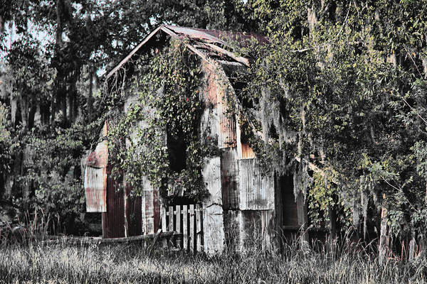 Barn Art Print featuring the photograph At the Barn by Greg Sharpe