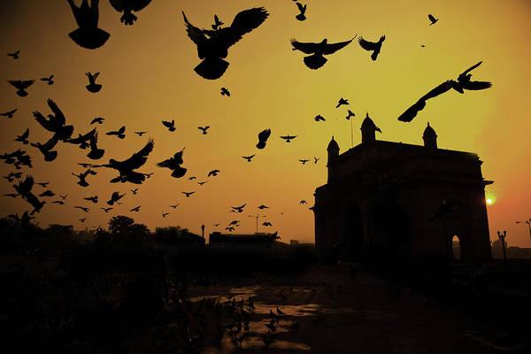 Horizontal Art Print featuring the photograph Birds In Flight At Gateway Of India by Photograph by Jayati Saha