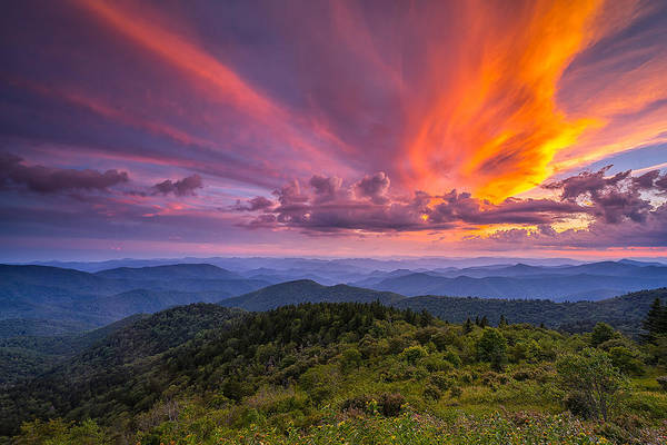 Blue Ridge Parkway Art Print featuring the photograph Blue Ridge Parkway - Summer Wages by Jason Penland