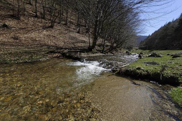 Above Art Print featuring the photograph Clear water Shteaza near Rasinari by Adrian Bud