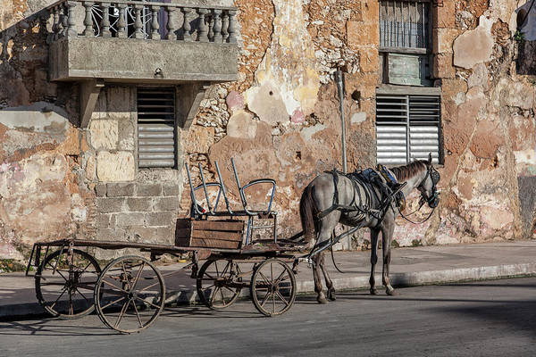 Cuban Horse Power; Cuban; Horse; Power; Horse And Carriage; Carriage; Hp; Cuba; Photography & Digital Art; Photography; Photo; Photo Art; Art; Digital Art; 2bhappy4ever; 2bhappy4ever.com; 2bhappy4evercom; Tobehappyforever; Art Print featuring the photograph Cuban Horse Power FC by Erron